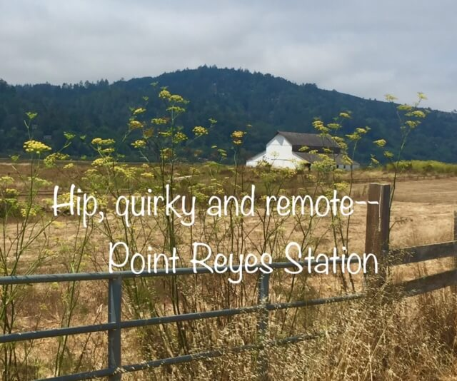 Hip, Quirky and Remote–a day trip to Point Reyes Station