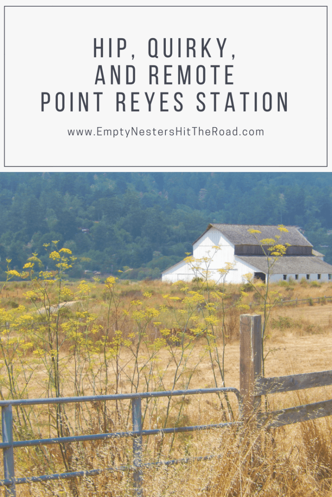 Point Reyes Station is a small town, remote town in Marin County, California. Its worth a day-trip to enjoy the scenery and shops, and maybe explore the hiking trails.