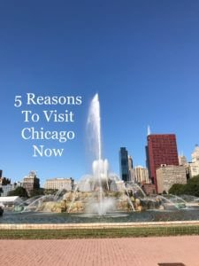 5 Reasons to Visit Chicago Now
