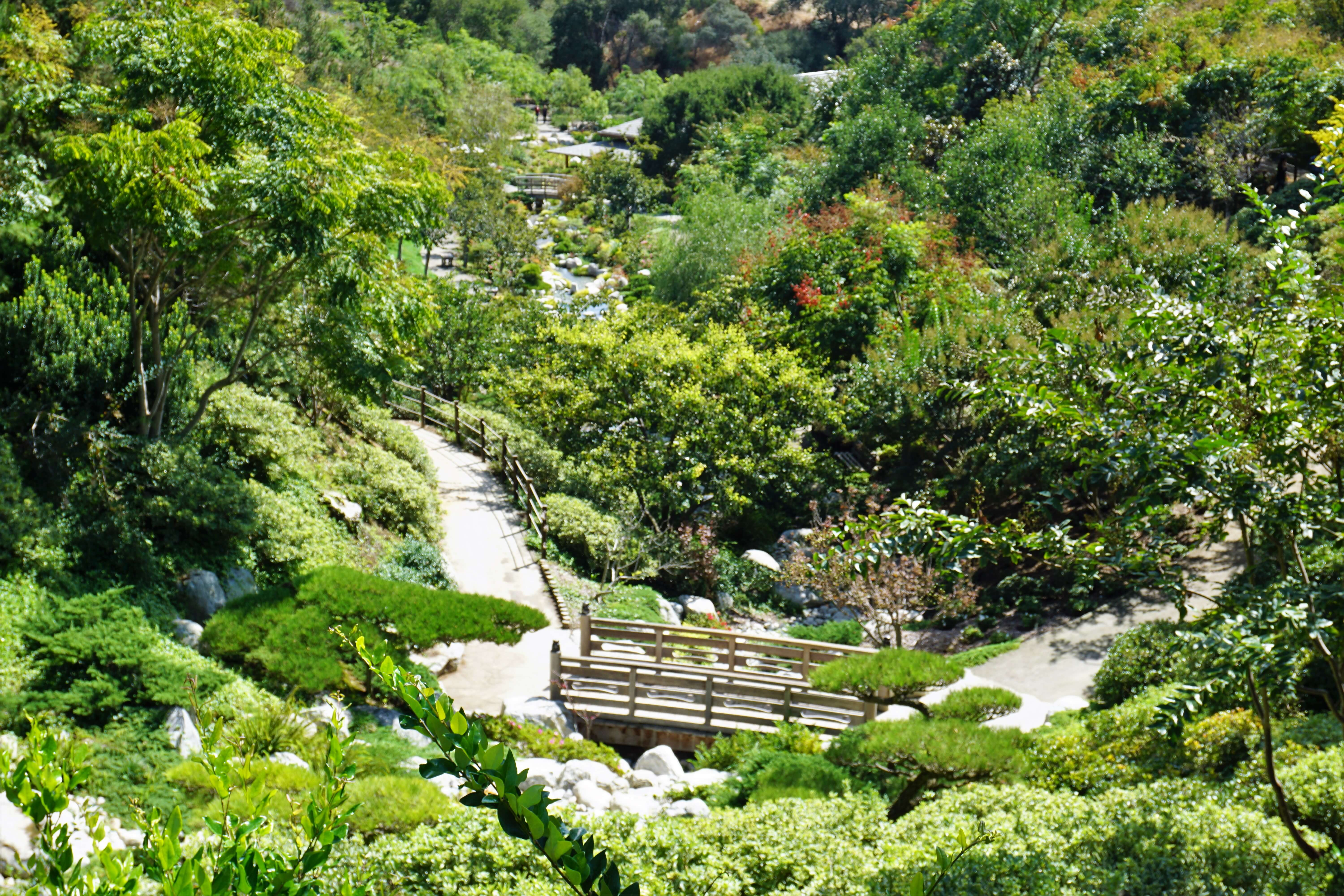 View of the Japanese Garden in Balboa Park, San Diego