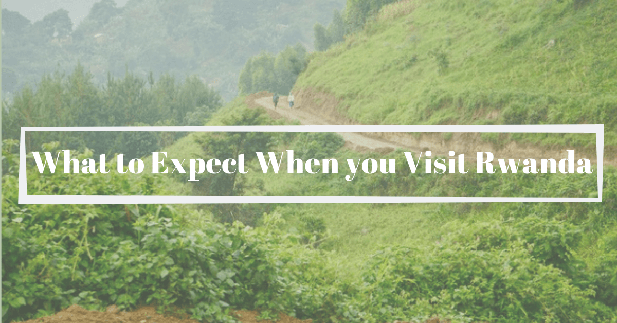 What To Expect When You Visit Rwanda