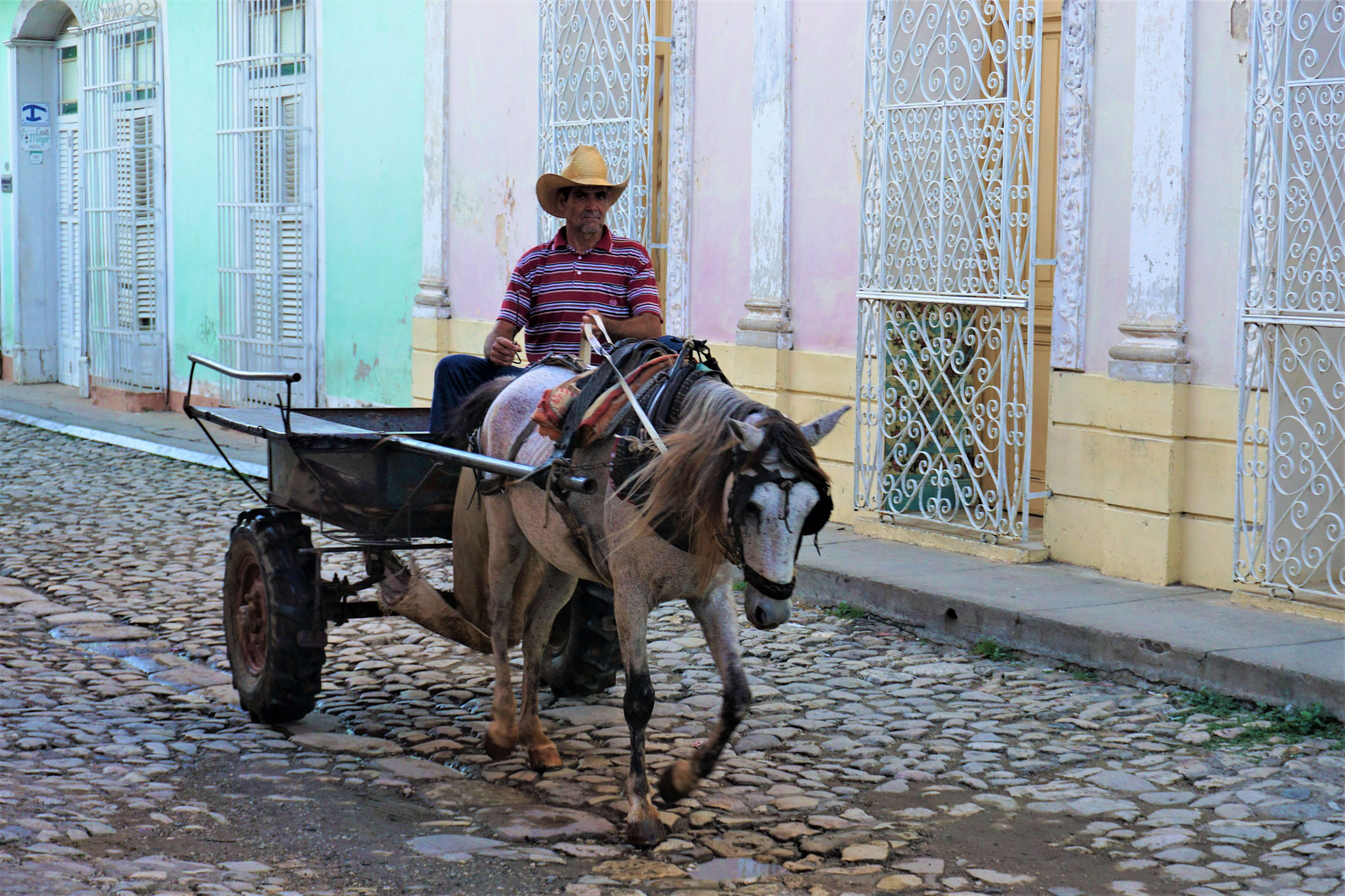 Man on a horse cart in Trinidad Cuba
