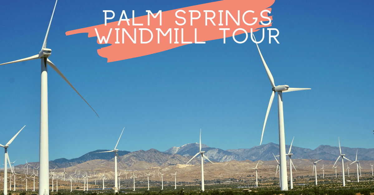 Palm Springs Windmill Tour