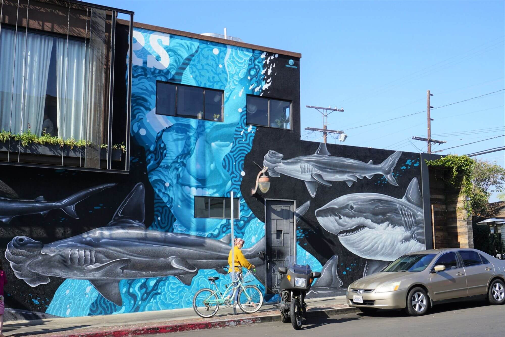 Mural on a Venice Beach buidling