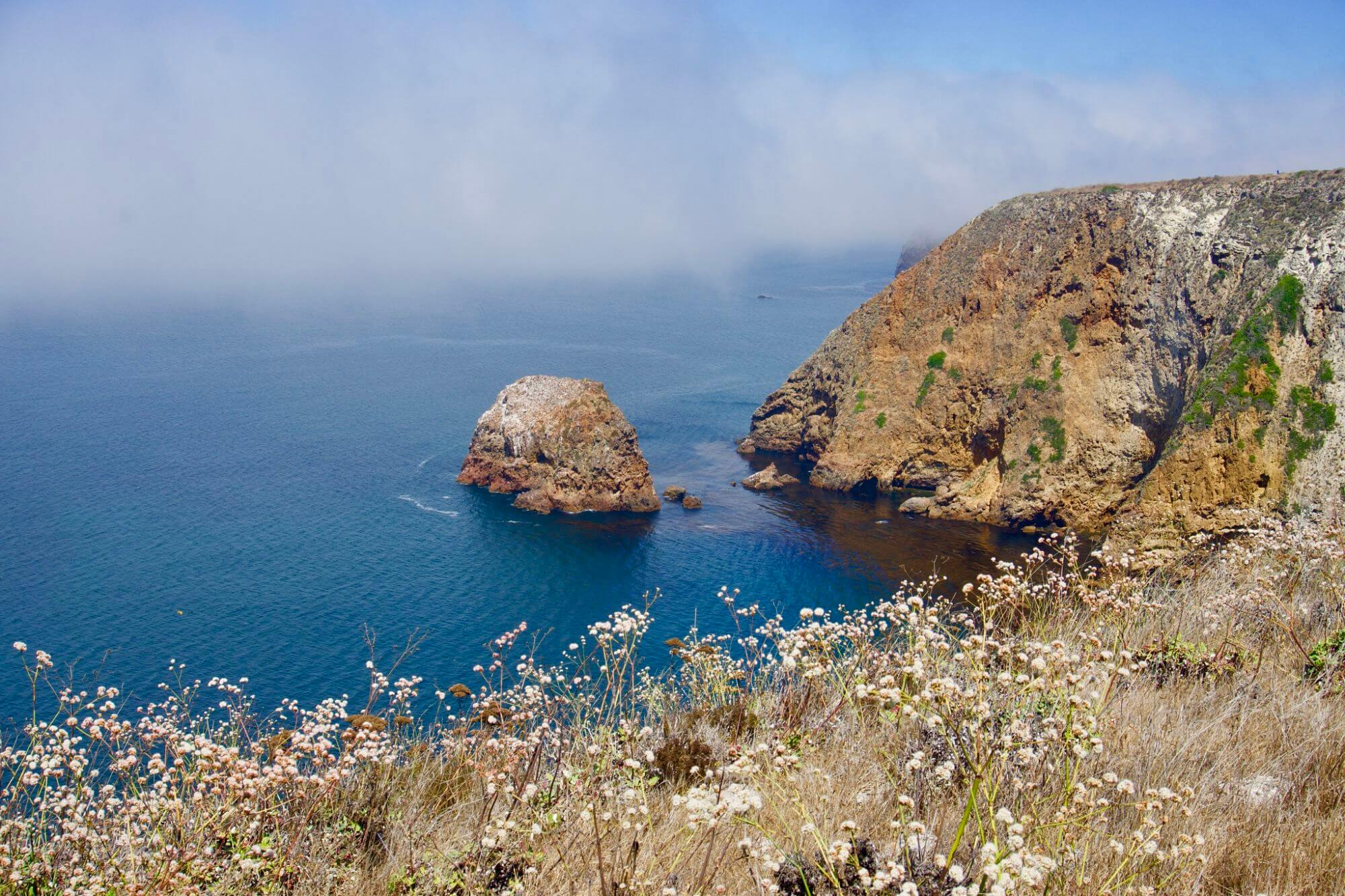 View of the ocean along the Potato Harbor Overlook Trail on Santa Cruz Island