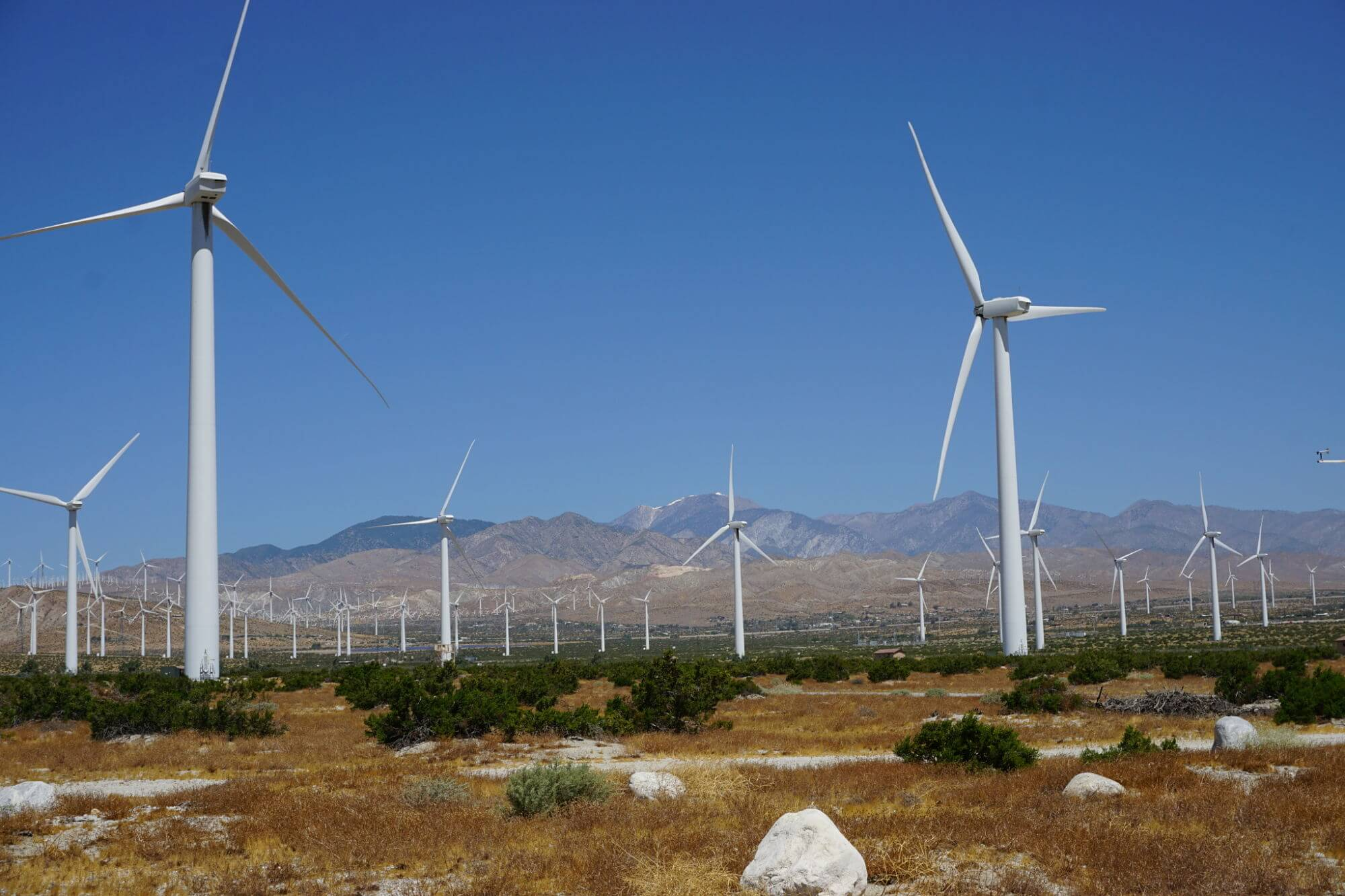 Palm Springs Windmills tour