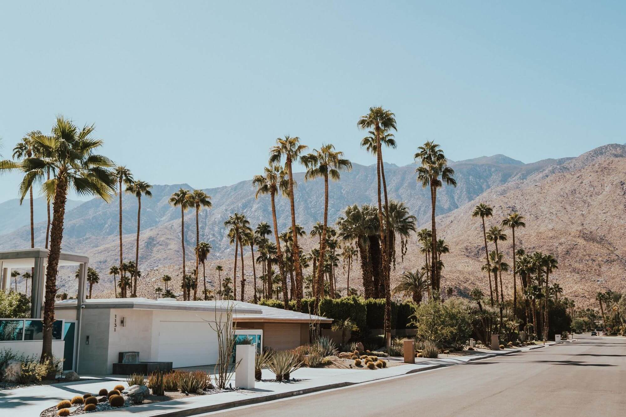 Palm Springs in the summer