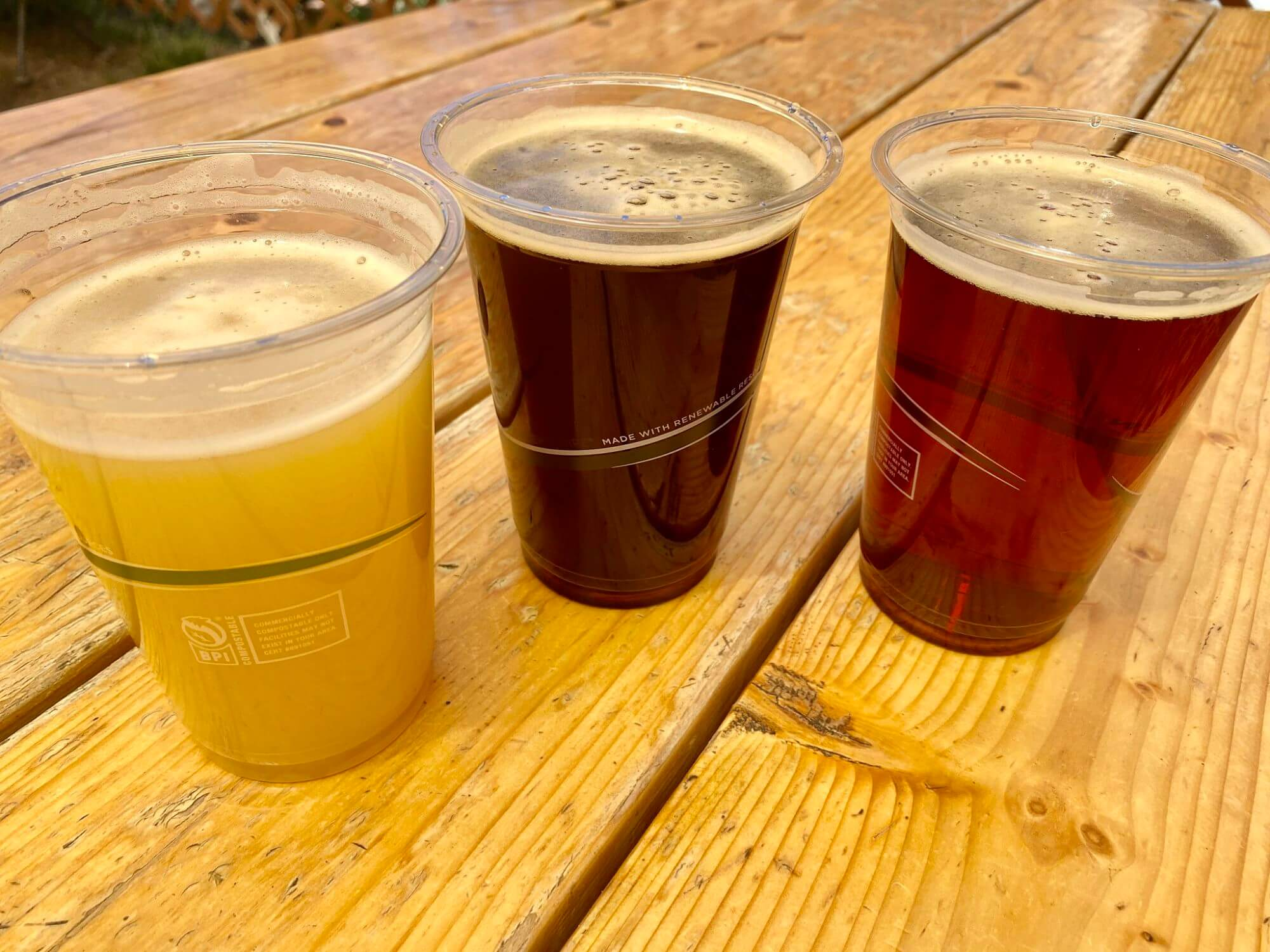 Three beers from June Lake Brewing
