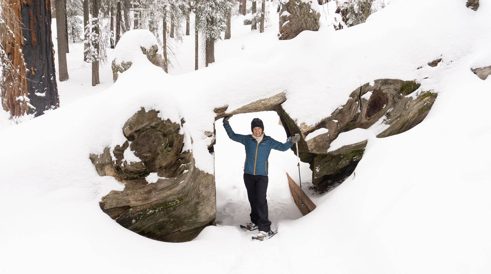 Wendy under a Giant Sequoia--Sequoia National Park in Winter
