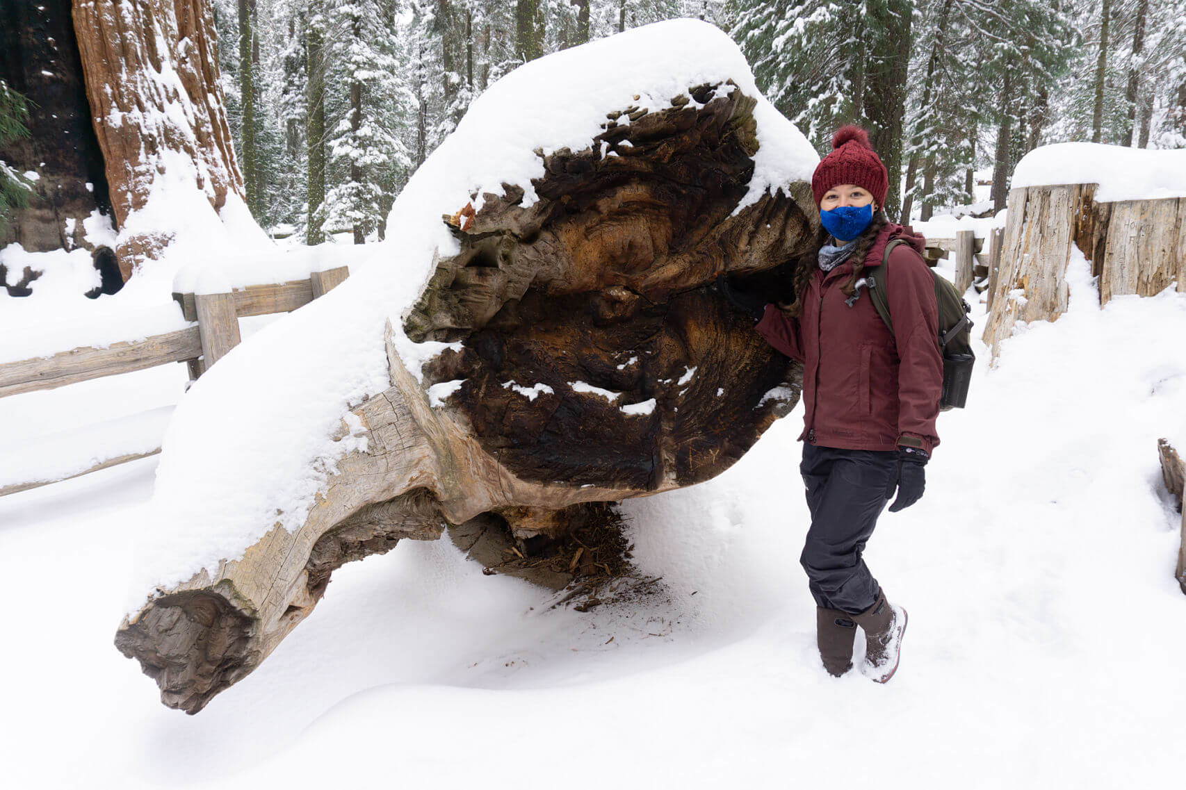 Krista of Sequoia Guides--Sequoia National Park in Winter
