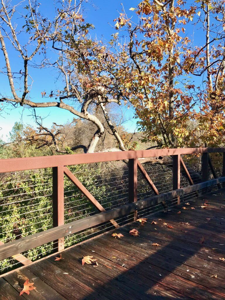 Orange County Hikes--Shady Canyon Trail in Irvine