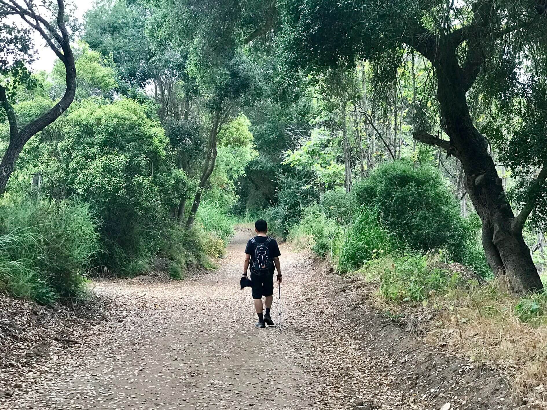 Hikes In Orange County--Moro Canyon Trail