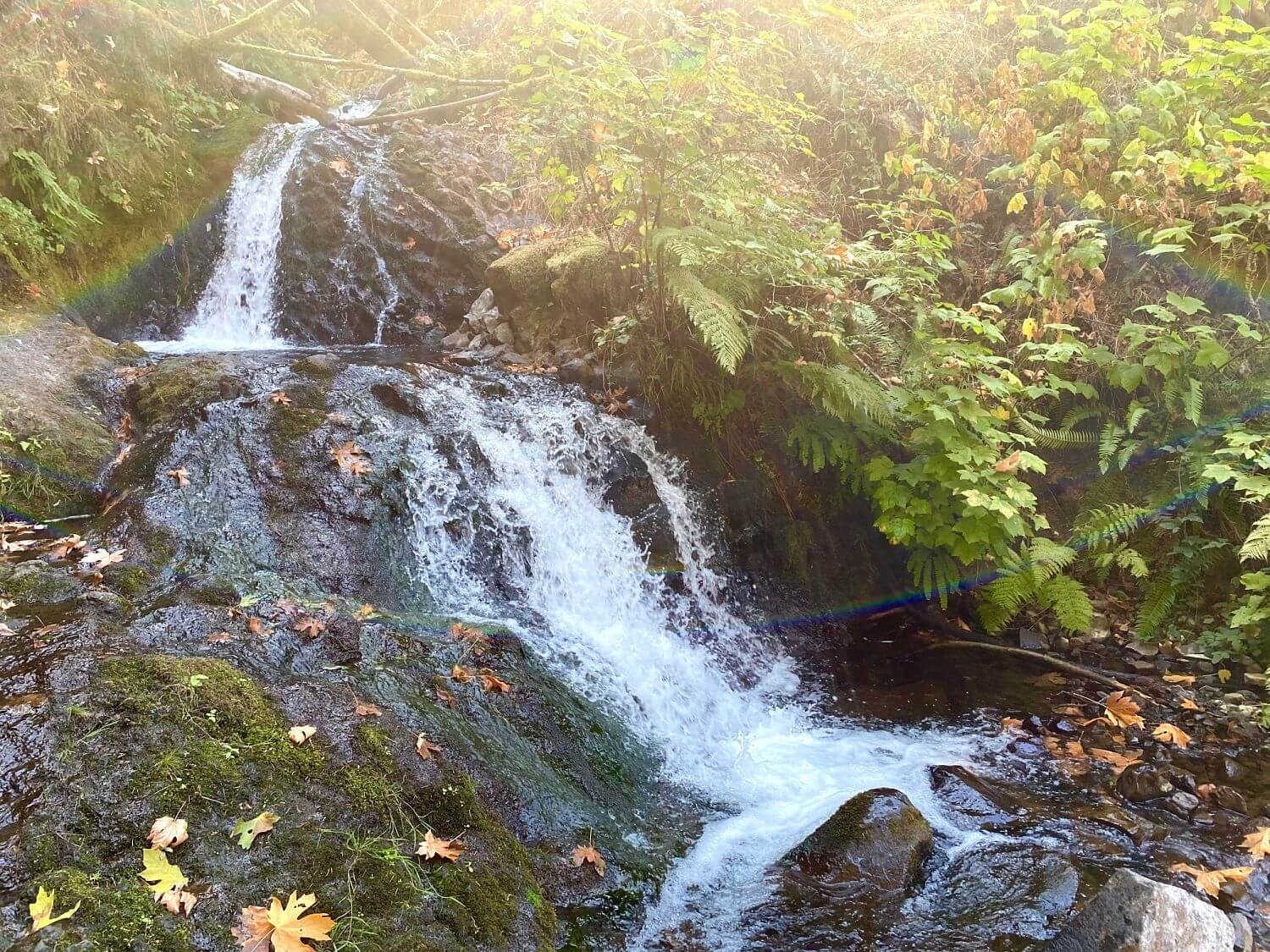 Exploring The Columbia River Gorge Waterfalls On Electric Bikes